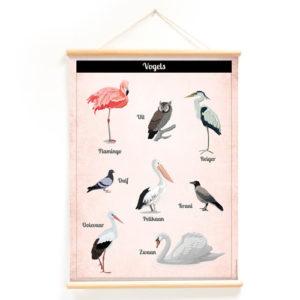Wandplaat Vogels