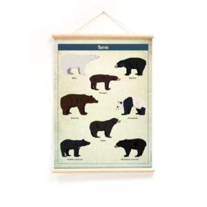Schoolplaat wanplaat beren