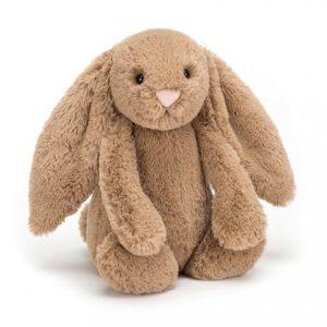 jelly cat wijs west wijswest online shoppen winkel amsterdam speelgoed Jellycat BAS3BIS Knuffels 670983113266 Jellycat Bashful Biscuit Bunny Medium