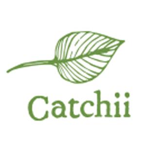 Catchii - Categorie Afbeelding
