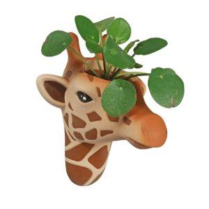 bloemenpot giraffe