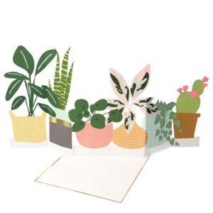kaart versturen plant