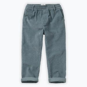 Wijs west Sproet & Sprout Sproet & Sprout Pants Corduroy Stone Blue 1138187047781 Sproetaw20-1 Kleding & Accessoires Broeken