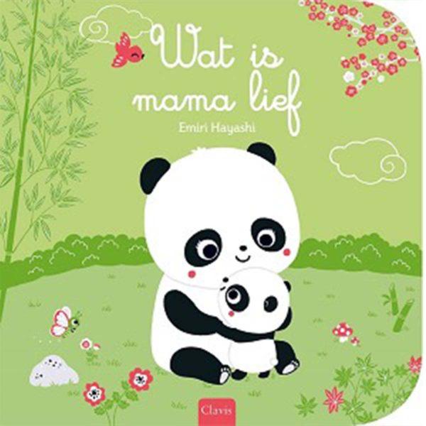 Wat is Mama Lief 9789044833775