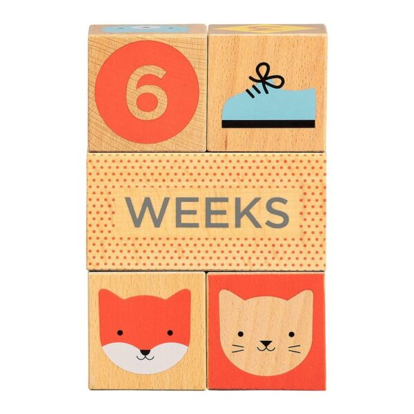 Petit Collage Wooden Baby Milestone Blocks